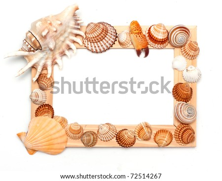 holiday beach concept with shells, sea stars and  blank postcard