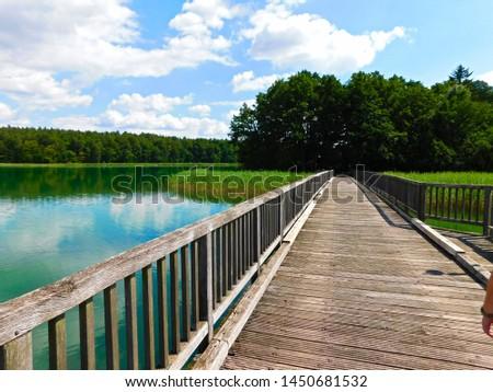 Holiday on Lake Brückentiner in Mecklenburg-Vorpommern #1450681532