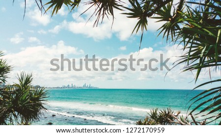 Holiday Summer Ocean Beach Walk Sea escape Blue Water Vacation Surfers Paradise Palms Palm frame