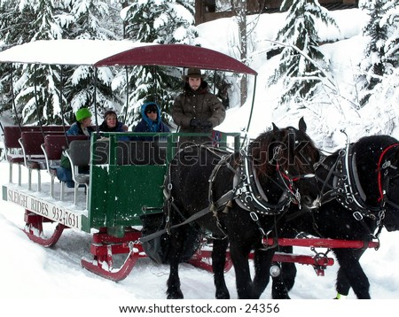 Holiday, travel, horse, sled, snow, recreation