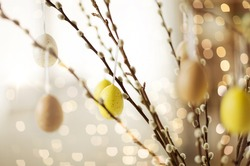 holidays and object concept - close up of pussy willow branches decorated by easter eggs over bokeh lights