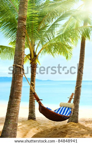 Holidays. Empty hammock between palm trees