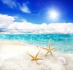 Holidays in the wonderful Caribbean Samana beach, summer vacation, background with starfish,  sea shells, beach and sunny sky,  holiday symbol