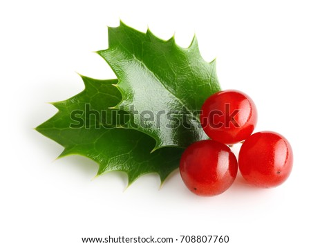 Holly berry leaves Christmas decoration #708807760