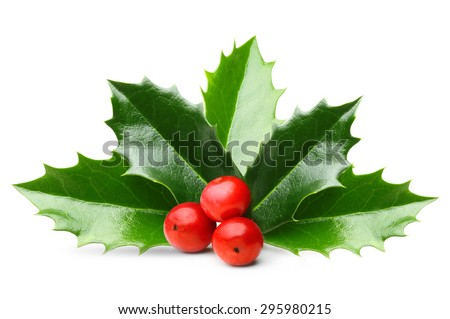 Holly berry leaves Christmas decoration isolated on white background #295980215