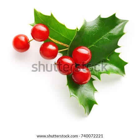 Holly berry leaves Christmas decoration isolated on white background #740072221