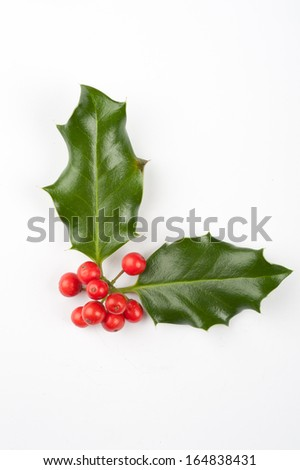 Holly Christmas decoration