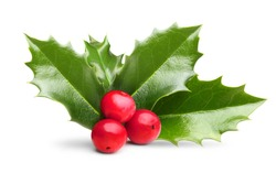 Holly leaves decoration with red berries.