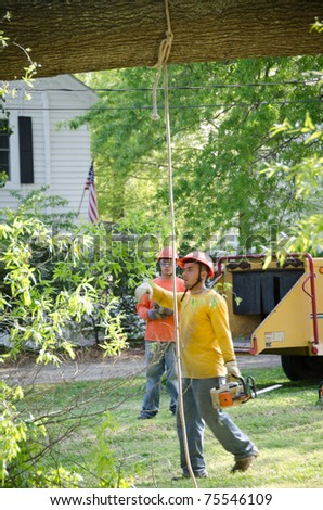 HOLLY SPRINGS, NC, USA - APRIL 18: After a tornado  a crane is removing a tree that fell on a home in the town of Holly Springs on April 18, 2010 in Holly Springs, NC, USA