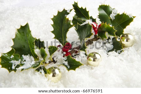 Holly with red berries in snow with sparkling background