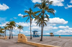 Hollywood Beach with tropical coconut palm trees and boardwalk in Florida.