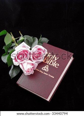 holy bible king james version and three pink roses on black background