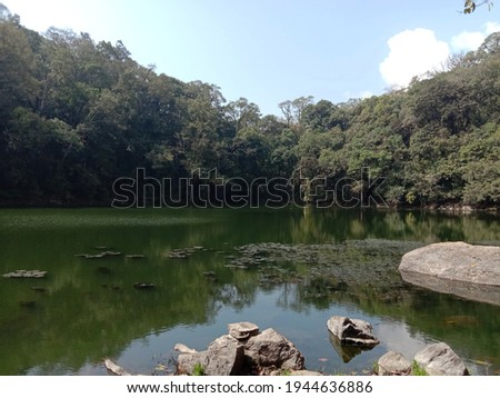 Holy Lake at Buli Village.  It is a beautiful lake surrounded by thick vegetation and home for many water birds.  Stock fotó ©