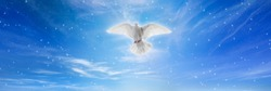 Holy spirit bird descends from skies, bright light shines from heaven, white dove is symbol of love and peace