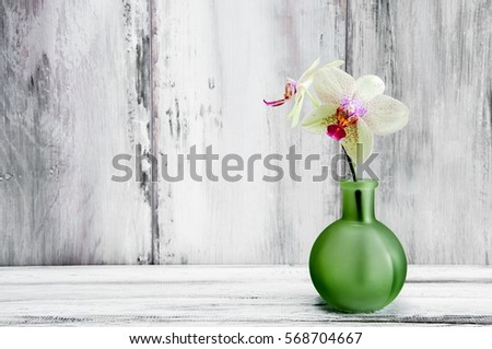 home decor  orchid flowers in a ...