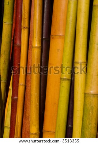 Home decorating with colored bamboo poles in a natural for How to decorate bamboo sticks