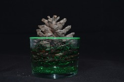Home decoration product with pine cone