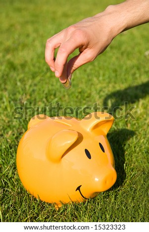 home finance concept with piggy bank on the grass