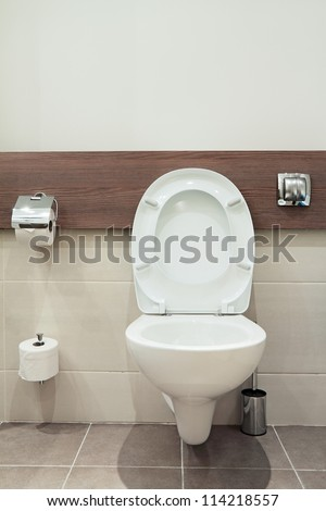 Home flush toilet (toilet bowl, paper)
