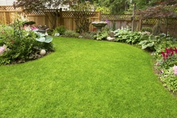 Home Garden. Residential garden transitioning spring to summer.
