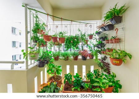 Home grown flowers and herbs in the hanging pots at balcony at Ang Mo Kio area. Growing a garden in a sharing apartment\'s balcony/corridor is popular in Singapore. Great for urban farm publications