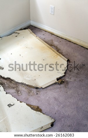 Home Interior Water leaking damaged plasterboard and carpet
