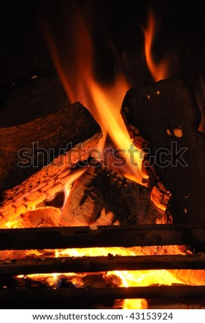 Home Log Fire burning