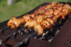 Home made shaslik on open fire. Shish kebabs is frying on the barbecue grill.