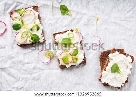 Home made vegan sandwiches with vegan cottage cheese, green onion, raddish and honey. Vegan snack, meal, food, lunch brunch, breakfast concept. Flat Lay. Top View.