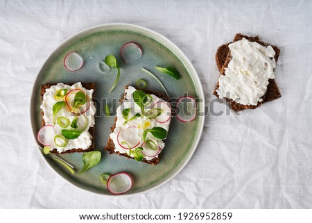 Home made vegan sandwiches with vegan cottage cheese, green onion, salad, raddish and extra virgin olive oil. Vegan snack, meal, food, lunch brunch, breakfast concept. Top View. Flat Lay