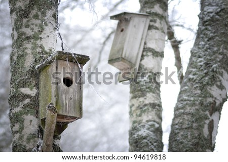 Home made wooden bird houses in trees.