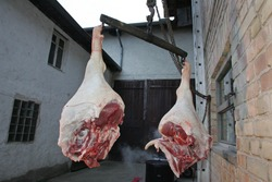 home slaughtering, Pork hanging on hooks