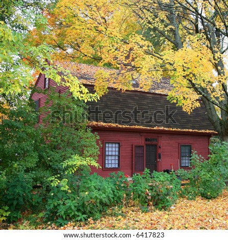 home surrounded by trees and shrubs in Autumn