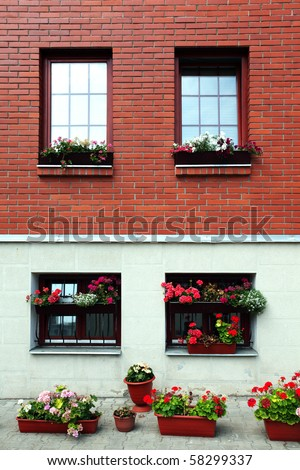 Home wall and windows with flower pots.