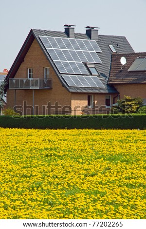Home with solar panels and a meadow of dandelion