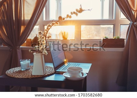 Home work place with laptop, cup of hot drink and blooming brunch in vase on coffee table near window on sunset or sunrise. Freelance, working from home, online learning, home office. Slow living