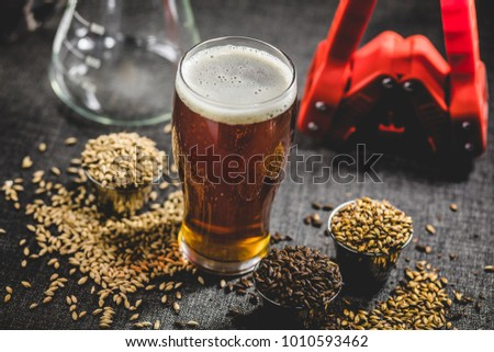 Homebrew Honey Brown Beer, Different Barley and Brewing Equipment in Studio with Dramatic Light #1010593462