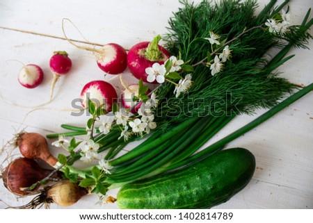 Homegrown vegetables. Fresh organic vegetables. Vegetables from garden. Colorful vegetable . Healthy vegetable.