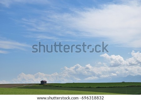 homely and bright rural scene #696318832