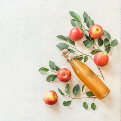 Homemade apple cider vinegar or juice in glass bottle with ingredients: fresh organic garden apples with bunches and leaves on white table background. Top view. Flat lay. Border. Frame. Copy space