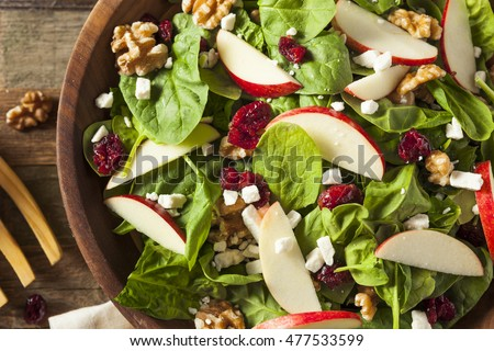 Homemade Autumn Apple Walnut Spinach Salad with Cheese and Cranberries #477533599