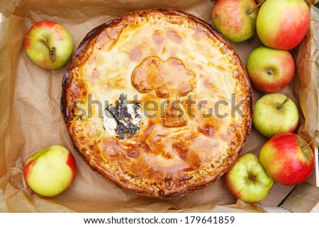 Homemade baked apple pie with poppy seeds and apples in wooden box with fresh fruits
