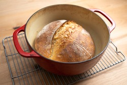Homemade boule (round loaf) of freshly baked sourdough bread in a red Dutch oven