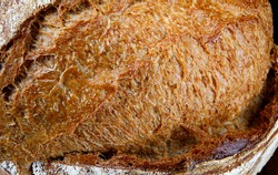 Homemade bread surface. Beautiful crust of bread close-up. art bread.