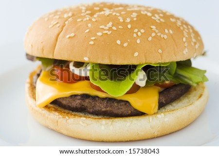 Homemade cheese burger on the plate over white background