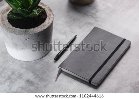 Homemade concrete pot with succulent and notebook on marble background