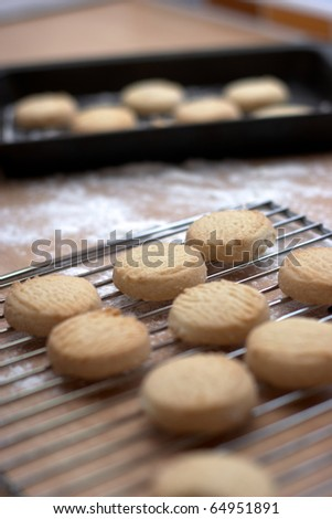 Homemade Cookies on a cooling rack
