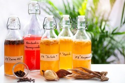 Homemade fermented raw Kombucha tea, healthy natural probiotic flavored drink, variety of Kombucha drink against white background, Cacao nib, Salacca palm fruit, Fingerroot ginger