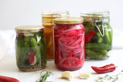 Homemade fermented summer pickles : cucumbers, red onion and mango curry : traditionally preserved with herbs & spices. red onions pickles, cucumbers in  dill garlic and hot red pepper brine