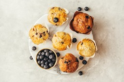 Homemade muffins with blueberries. Top view. Grey stone background. Copy space.